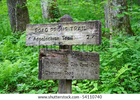 Trails Intersect in the Smokies - stock photo