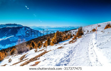 Trails on fresh snow on Dolomites Alps - stock photo