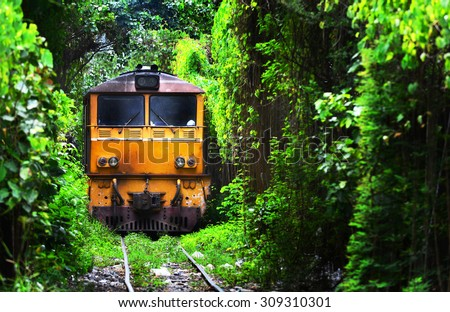 Train running on Natural Train tree tunnel in Thailand (Bangkok) - stock photo