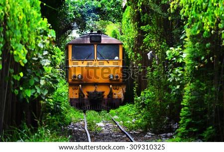 Train running on Natural Train tree tunnel in Thailand (Bangkok) - stock photo