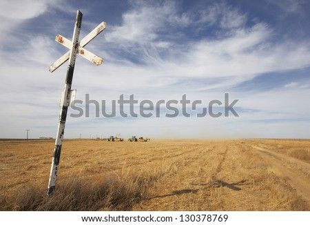 Train signal on a crossroad with wheat field