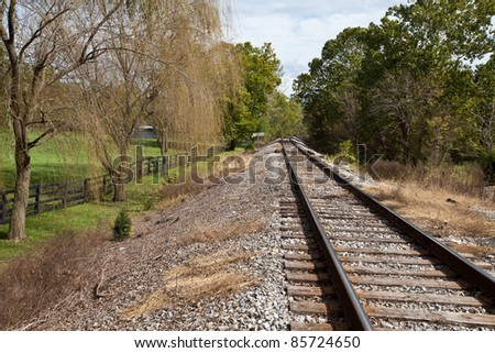 Train tracks going into the trees next to a weeping willow tree - stock photo