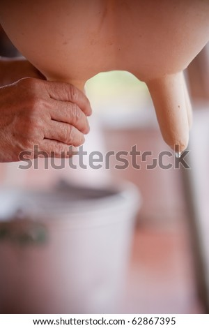 Trainer milk of a cow. - stock photo
