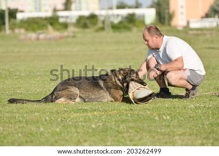 training of a police dog  - stock photo