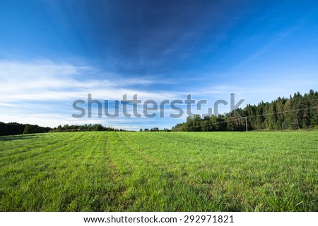 Tranquil grassland at sunrise - stock photo