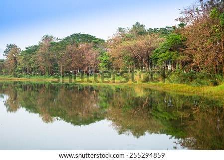 Tranquil lake and green forest mountain in summer - stock photo