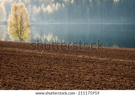 Tranquil morning - stock photo