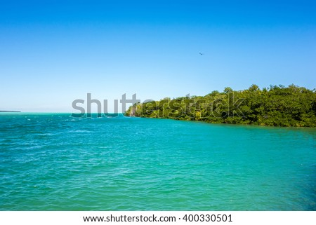 tranquil nature in florida keys - stock photo