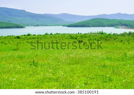 Tranquil rural landscape: spring meadow with daisy against lake and mountains. Focus on foreground. - stock photo