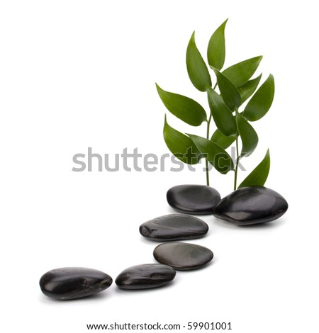 Tranquil scene. Green leaf and stones isolated on white background. - stock photo