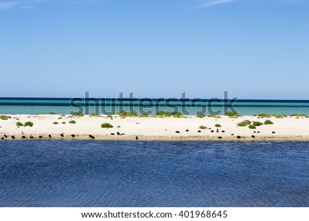 Tranquil  scenic view of the idyllic coastline at peaceful  Dunsborough in   Geographe Bay   South Western Australia on a fine late  afternoon in  spring. - stock photo