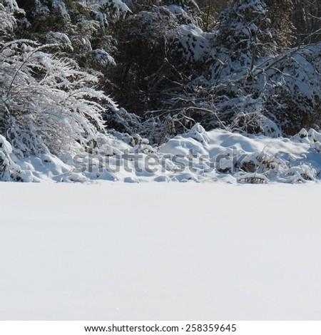 tranquil snow scene - stock photo