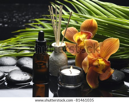 tranquil spa scene - candle with orchid flower and green palm, zen stones - stock photo