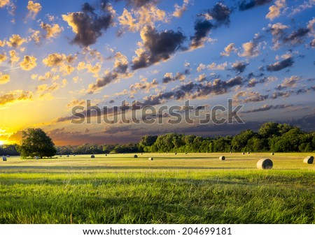 Tranquil Texas meadow at sunrise with hay bales strewn across the landscape - stock photo