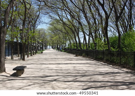 tranquil walkway surrounded by blooming trees and bushes - stock photo