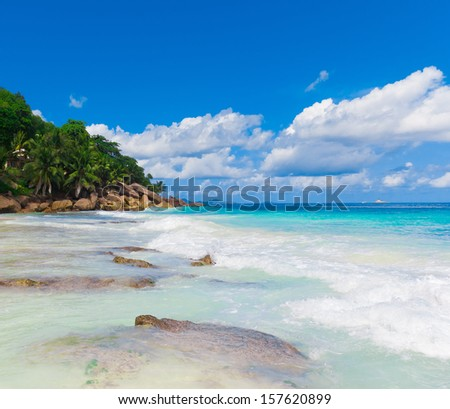 Tranquility Dream Jungle  - stock photo