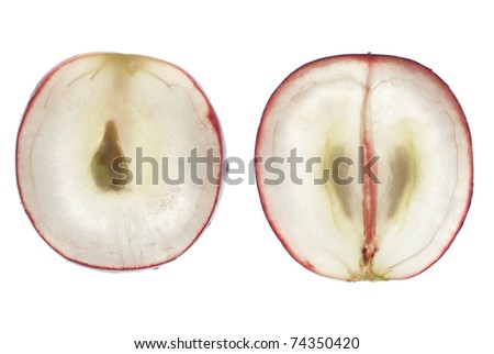 Translucent slice of red grape fruit, macro isolated on white. - stock photo