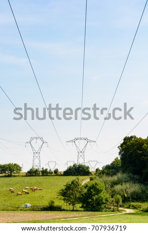 Transmission towers with high-voltage lines passing over a meadow where cattle graze.
