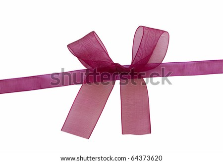 transparent purple bow