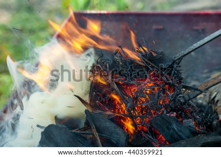 campfire fish grilling fish on campfire stock photo 79789132 shutterstock