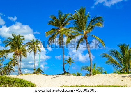 Travel in Dominican Republic. beautiful carribean beaches