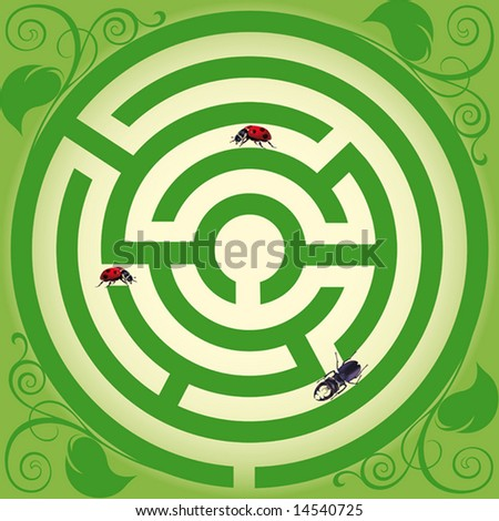 Travel of insects. Insects persistently creep to the center of a labyrinth. vector. illustration - stock photo