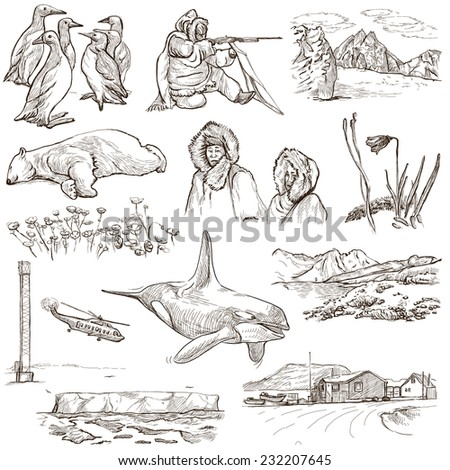 Travel series: POLAR REGIONS (Antarctica and Greenland) - Collection (no.1) of an hand drawn illustrations. Description: Full sized hand drawn illustrations drawing on white background.