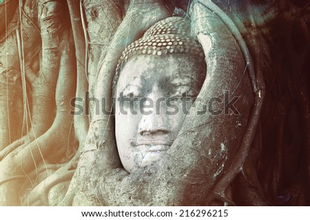 Travel to Thailand, Ayutthaya. Old tree Buddha stone sculpture. Wisdom and pray - stock photo