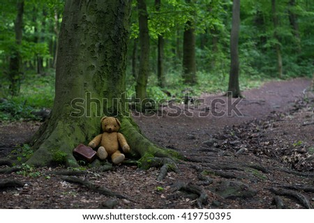 Traveler teddy bear with little luggage in the wald