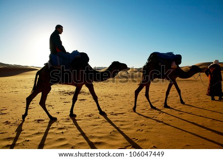 traveling in the desert - stock photo