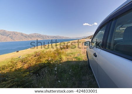 Traveling New Zealand countryside by car with a view of Cows grazing on a green pasture by the lake Hawea, New Zealand - stock photo