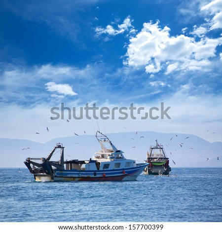 Trawler boats with seagulls in Ibiza Formentera islands - stock photo