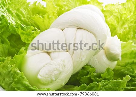Treccia di Mozzarella - stock photo