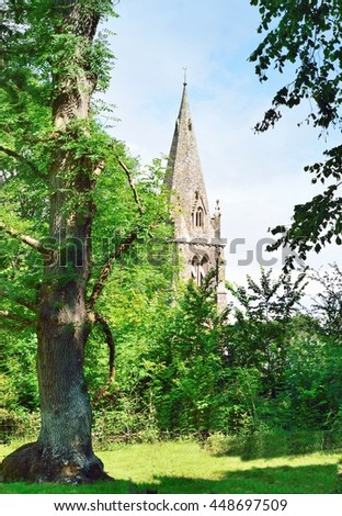 Tree and Church steeple in Cornish countryside.