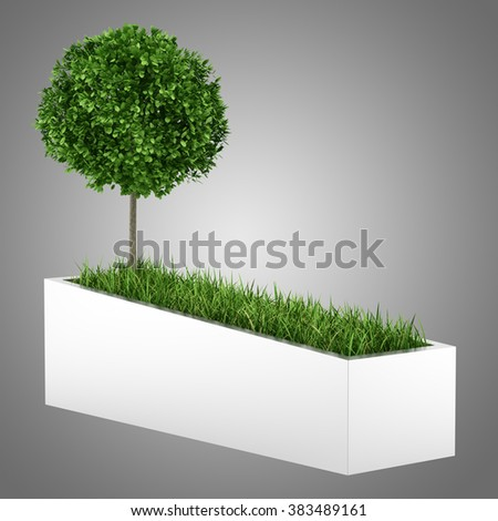 tree and grass in concrete planter isolated on gray background - stock photo