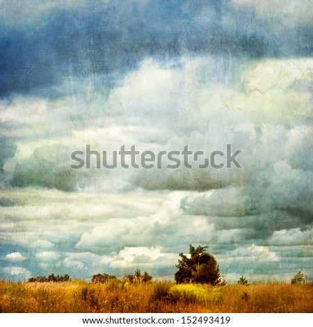 tree and grassland - retro style picture - stock photo