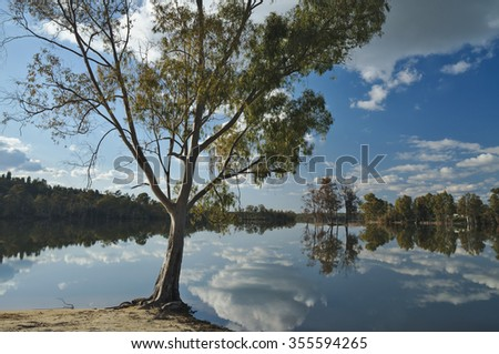 Tree and reflections by the Lake. Cloud reflections caught on a tranquil lake scene surrounded by forest. Photograph taken in Praia da Tapada Grande, Mertola, Alentejo, Portugal - stock photo