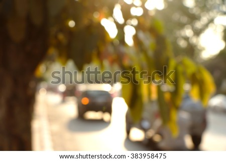 Tree and street in morning light, defocused. - stock photo