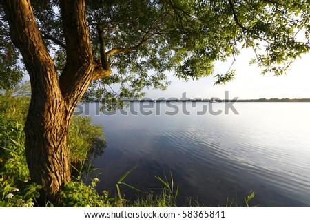 Tree and sunset lake - stock photo