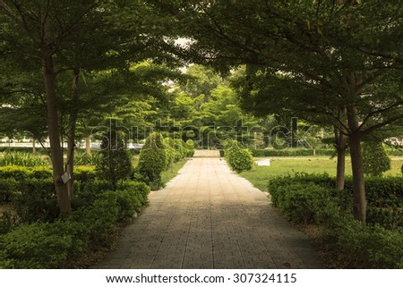 Tree and walkway On green grass field in the park - stock photo