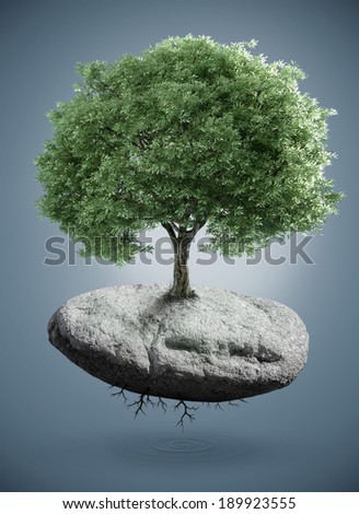Tree born to the suspended rock - stock photo