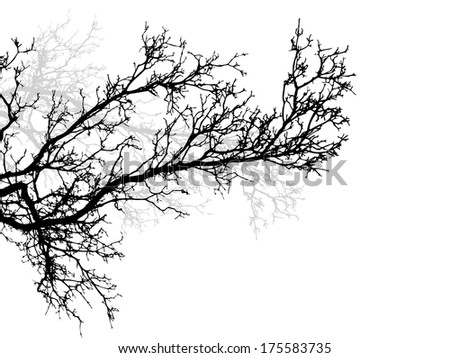 tree branch. Raster - stock photo