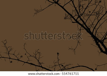 tree, branches, background