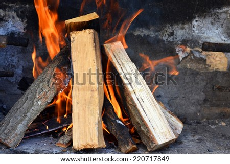 Tree branches burning - Burning Wood - stock photo