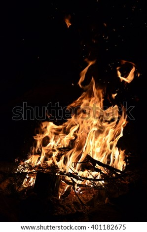 tree branches burning in a bright fire . fire illuminates the darkness of the night in the forest . bright yellow light  - stock photo
