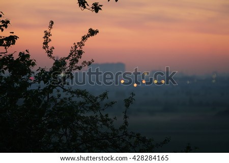 tree branches in front of blurred city with sunset evening sky, bokeh blur - stock photo
