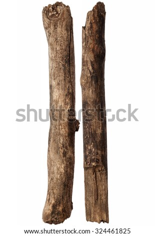 Tree branches isolated on white background