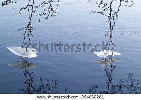 tree branches with icy collars touching water - stock photo