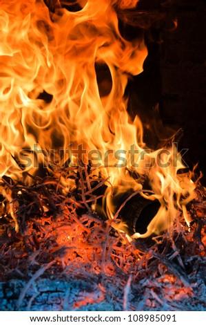 Tree burning in big flame - stock photo