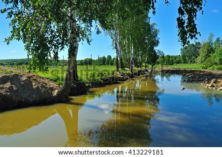 tree by the brook - stock photo